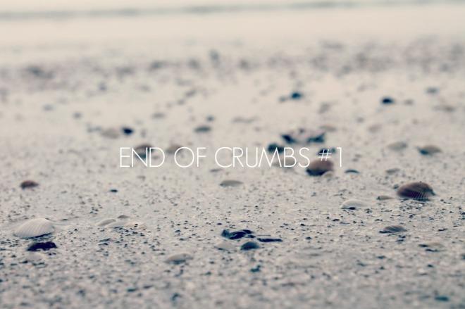 crumbs.jpg